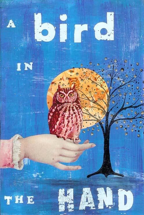 SPA Owls 1